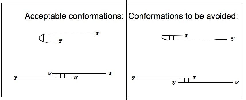 conformations